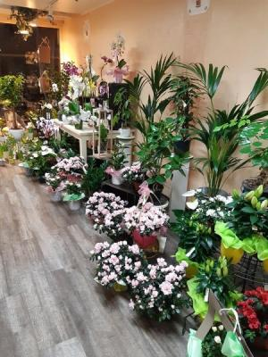 Vente décoration florale